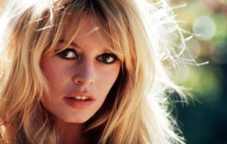 NEW Brigitte Bardot long hair