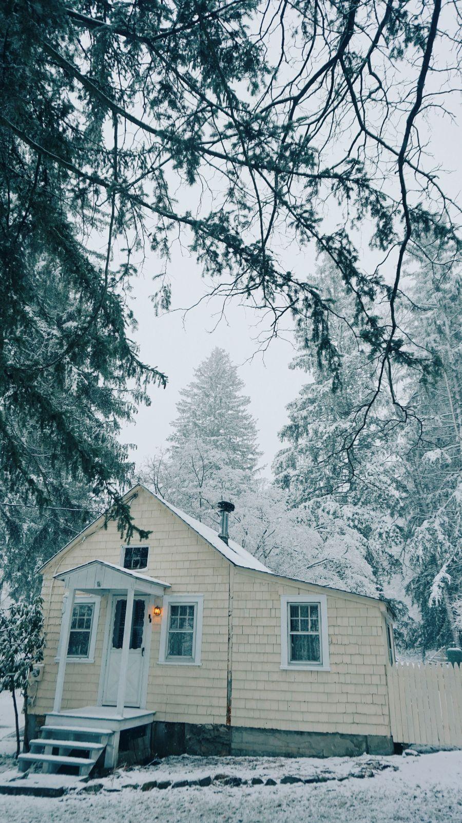 winter in new york 17-18