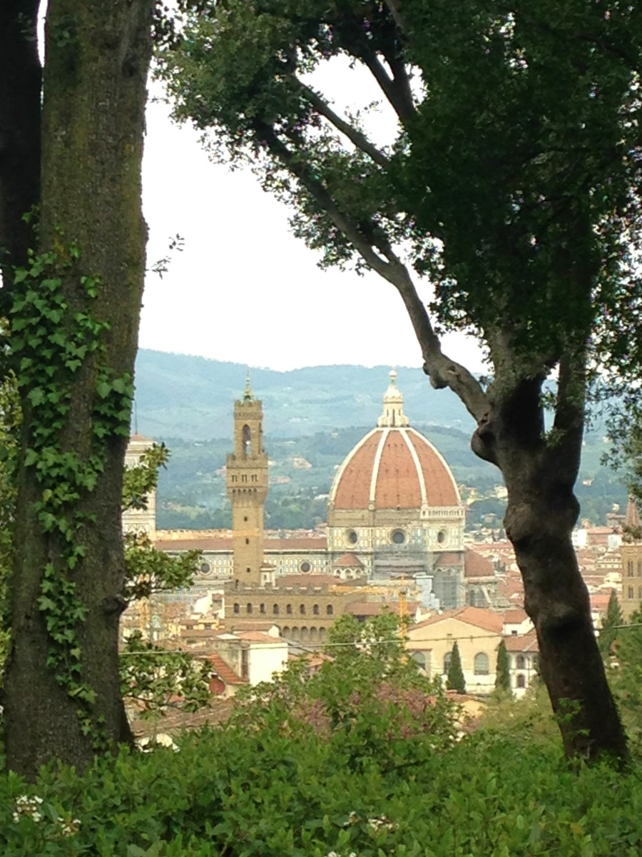 View from the Boboli Gardens